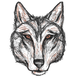 lonesome wolf
