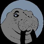 Walu the Walrus