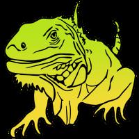 Leguan Reptil