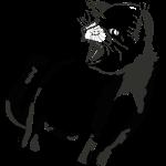 Fauchende Katze für buch.png