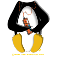 Motif ~ pingouinjaune