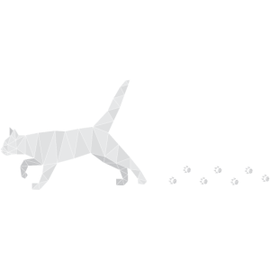 Polygonal Cat with Footprints
