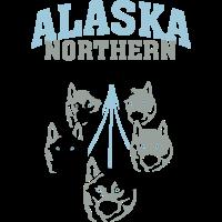 Alaska Northern Polar Dogs