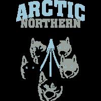 Arctic Northern Polar Dogs