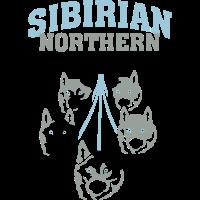 Sibirian Northern Polar Dogs