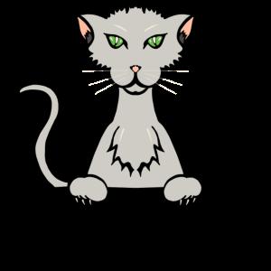 gattocolor1
