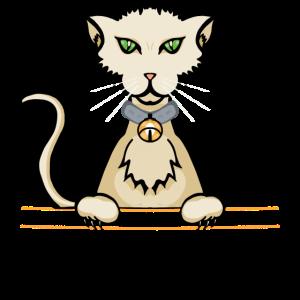 gattocolor2