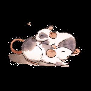 Mäuse Kuscheln