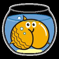 Assmex Goldfisch