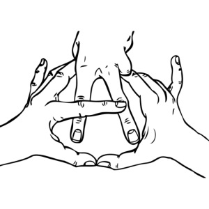 anarchy hands