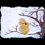 Kauz im Schnee