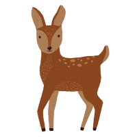 Bambi Reh-Design