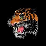 Logo ohne Hinter-1