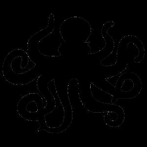 Krake / Tintenfisch / Calamari / Oktopus Tentakel