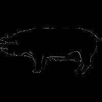 Schwein gehabt - für den Grillkönig / Grillmeister