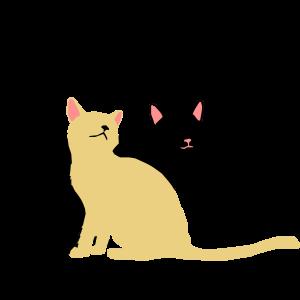 2 Katzen