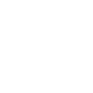 HEXAGON #4W