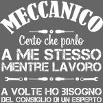MeccanicoConsiglioEsperto
