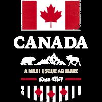 Canada Kanada Amerika maple leaf Flagge Fahne Bär