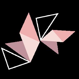 Geometrie Dreieck