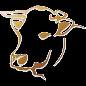cow-1485012