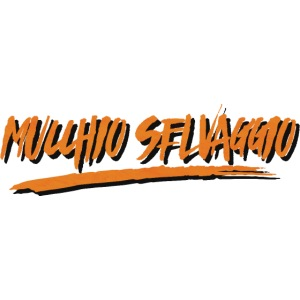 Mucchio Selvaggio 2016 Dirty Orange