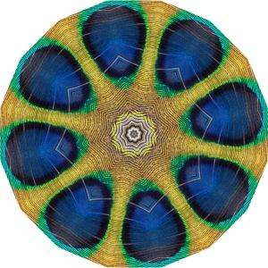 Pfau Kaleidoskop