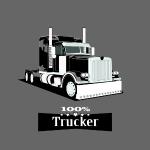 Best Trucker, 100% Trucker,Lkw Trucker Design