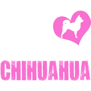 Chihuahua - Frau liebt