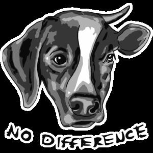 Kein Unterschied zwischen Hund und Kuh