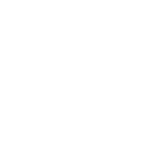 The only good system is a sound system - TECHNO