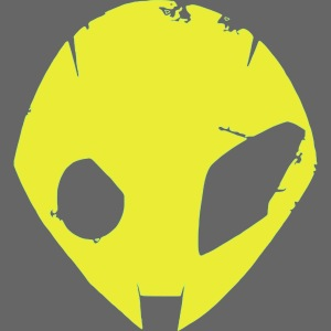 alien s1000rr