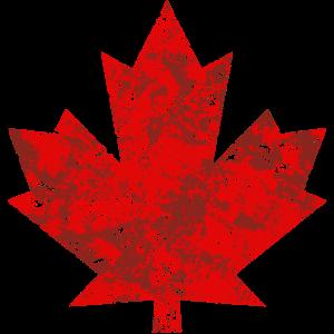 Kanada Canada Maple Leaf Ahornblatt Grunge Amerika