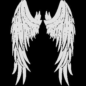 angelwingschoosen