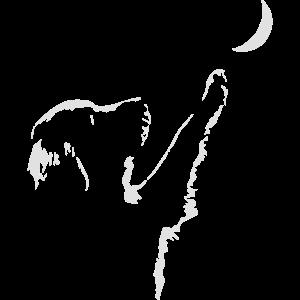 dog moon