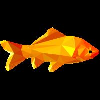 Goldfisch Polygon