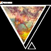 FROHSEiN Shirt Sum-Co-D03