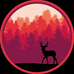 Hirsch Wald Sonnenaufgang Reh Wildtier Bäume
