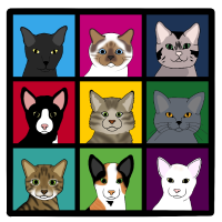 3x3 Katzen neu