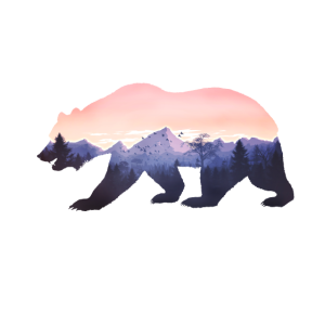 bär berge grizzly wild rocky cool natur california