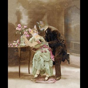 """""""Katzen lieben 1900, Wunder, Blumen"""""""