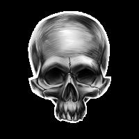 Totenkopf Totenschädel Skull