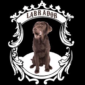 Labrador Retriever braun - this is my dog!