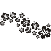 BALI hibiscus blooms black