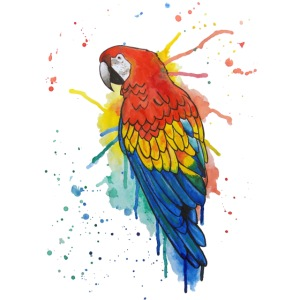 Parrot Watercolors Nadia Luongo