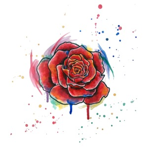 Rose Watercolors Nadia Luongo