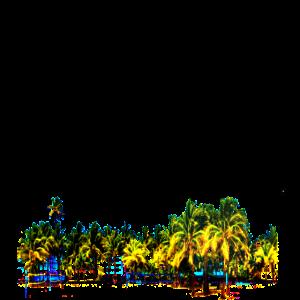 Miami SoundSets Palms