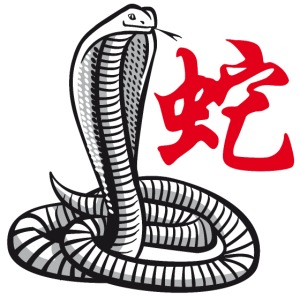 THE YEAR OF THE SNAKE (Chinese zodiac)