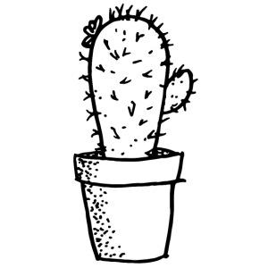 my tiny cactus