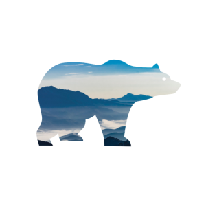 Bear in mountains